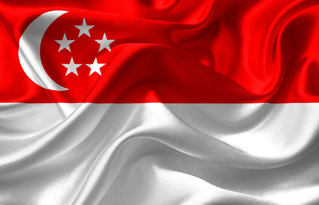 Intelligenz vererbt oder erworben in Singapur?