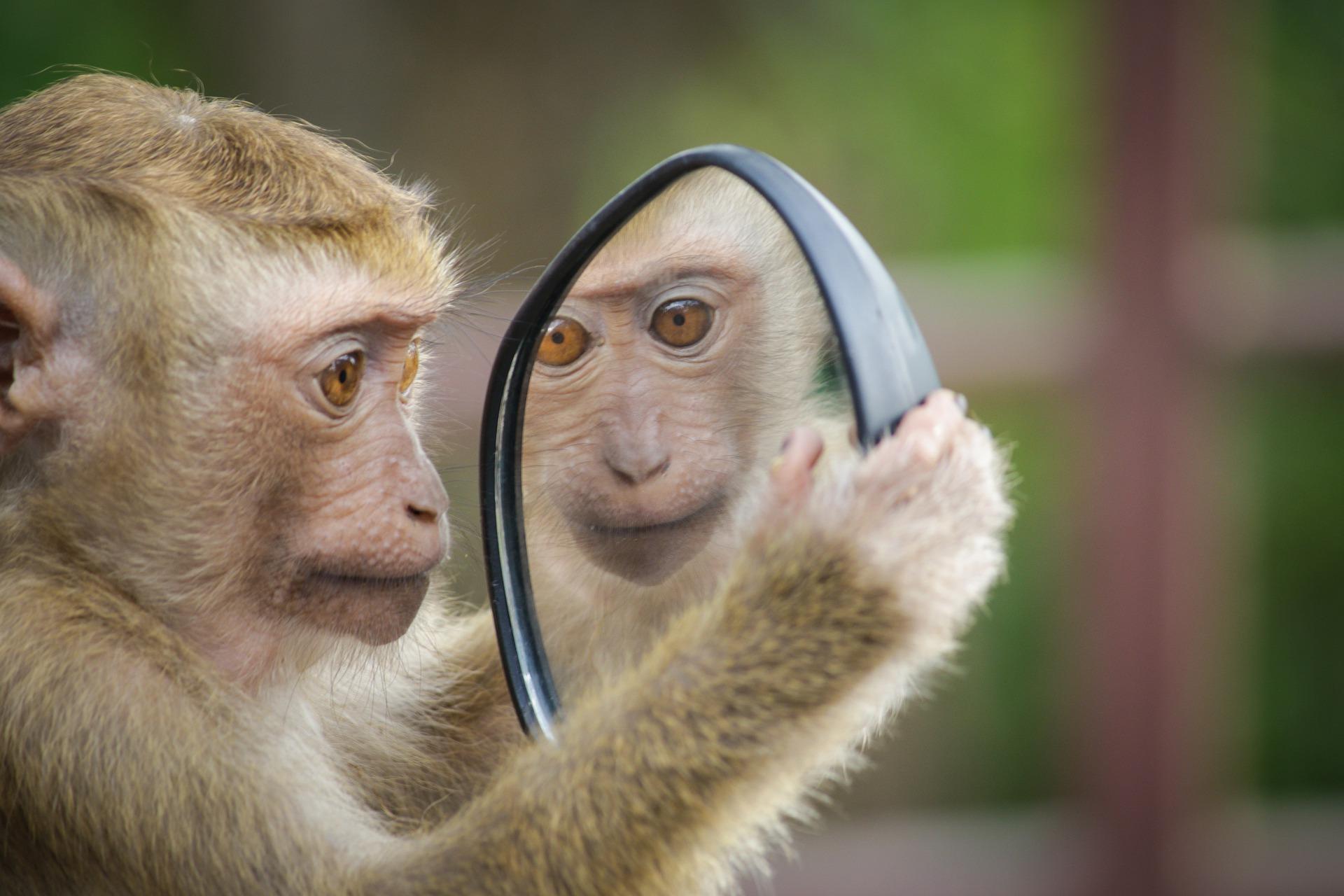 Spiegel-Übung gegen Prüfungsangst
